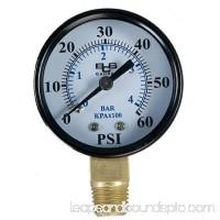 American Granby EIPPG602-4L 0 - 60 Pressure Gauge - 0.25 In.