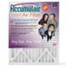 Accumulair Diamond 1 Air Filter, 4-Pack 553956662