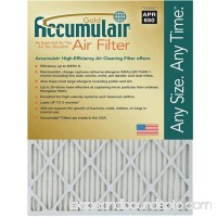 "Accumulair Gold 1"" Air Filter, 4-Pack   553956629"