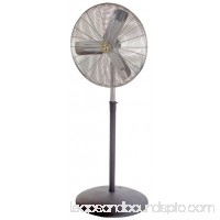 "AIRMASTER FAN Air Circulator,30"",115V CA30OAP"